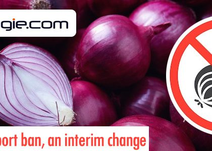 Onion export ban