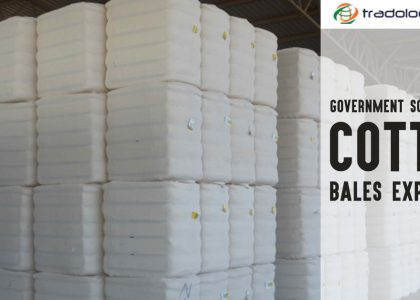 cotton bales exporters