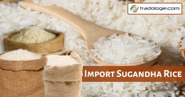 import Sugandha rice