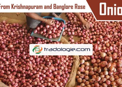 onion lift from Krishnapuram and Bangalore rose