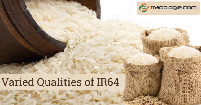 varied qualities of IR64