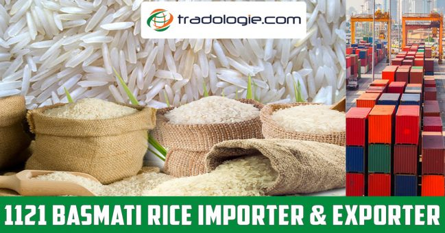 Buy 1121 Basmati Rice in Bulk – Basmati Rice Importer/Exporter