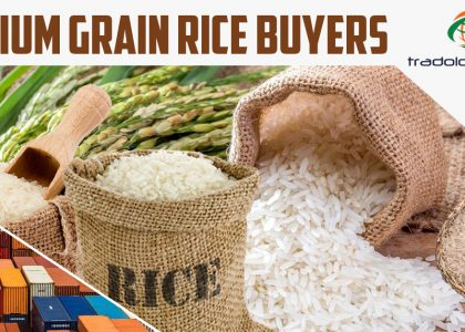 Medium Grain Rice Buyers, Bulk Trading of Medium Grain Rice, Medium Grain Rice Sellers