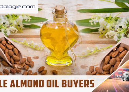 Edible almond oil buyers