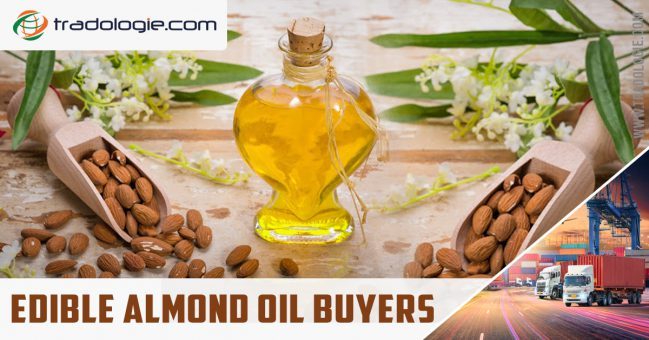 Edible almond oil buyers