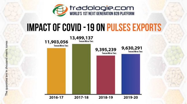 Impact of Covid 19 on Pulses Exports