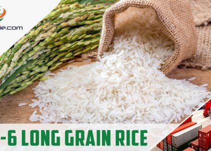 IRRI-6 Long Grain Rice