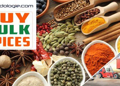Spices - Buy Bulk Spices